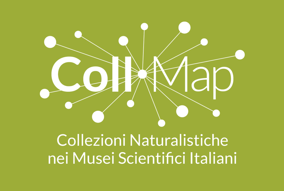 Progetto CollMap